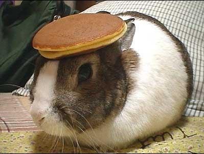 bunny_pancake.jpg